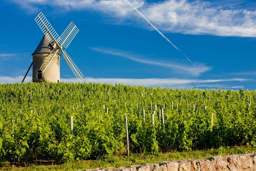 Beaujolais Moulin