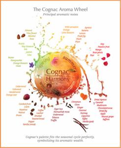 Cognac Aroma Wheel