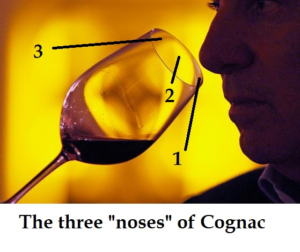 The 3 Noses of Cognac